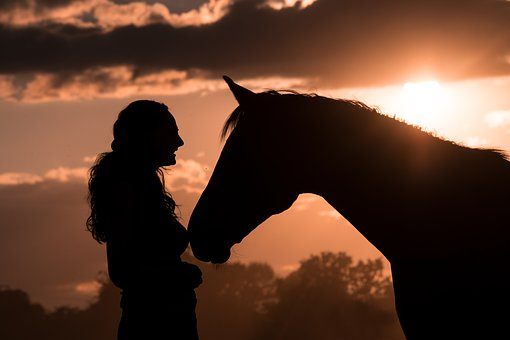 Silhouette, Horse, Human, Animal, Sky, Clouds, Sunset