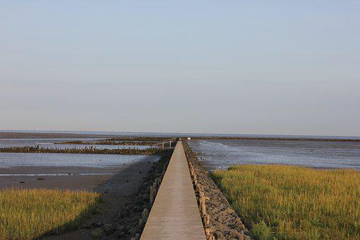 Watts, Web, North Sea, Boardwalk, Nature, Landscape