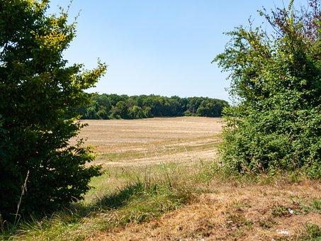 The Traces, Breuillet, Saint-sulpice-de-royan, Field