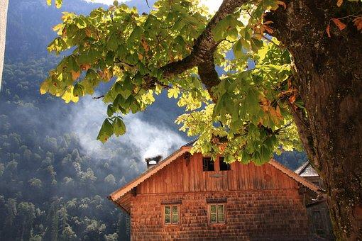 Mountains, Hut, Trees, Alpes, Königssee, Cloud