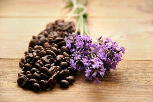 Coffee, Coffee Beans, Brown, Lavender, Purple
