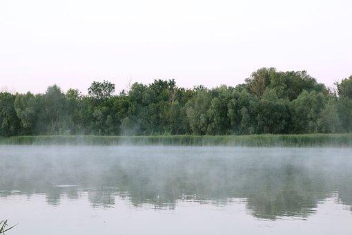 Dawn, Fog, Landscape, Trees, Sunrise, Nature, Forests