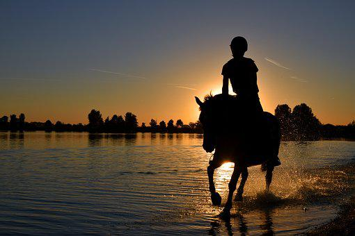Silhouette, Sunset, Water, Gallop, Ride, Horse, Human