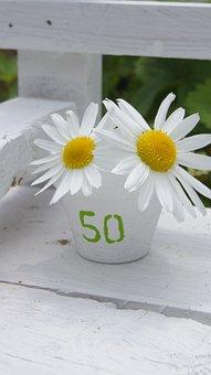 Birthday, Map, Anniversary, Flower