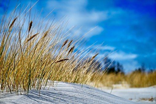 Denmark, Bornholm, Beach, Infinite Width, Vacations
