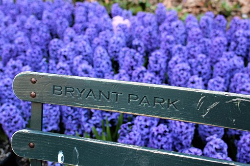 Bryant Park, Fence, Flowers, Park, New York