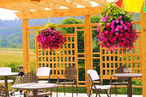 Winery, Nature, Vineyard, Wine, Summer, Decoration