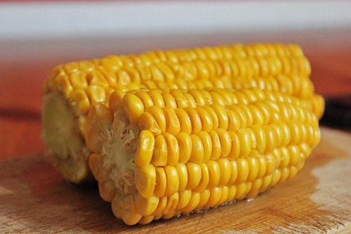 Corn, Close Up, Food, Yellow, Harvest, Corn On The Cob