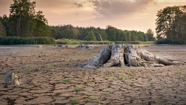 Drought, Cracks, Dry, Landscape, Mud, Dehydrated