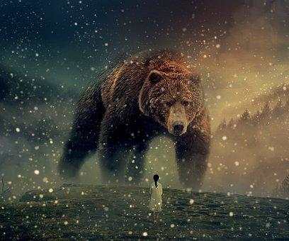 Photoshop, Bear, Woman, People, Landscape, Forest