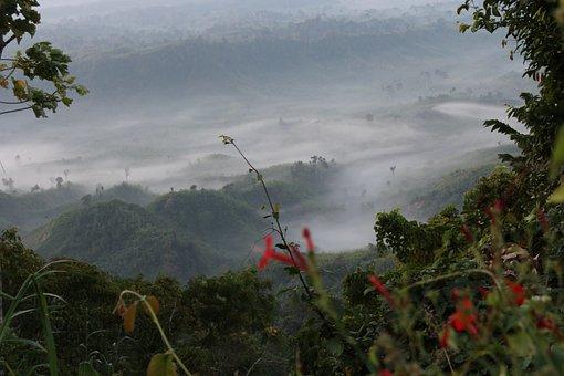 Nature, Sajek Valley, Bangladesh