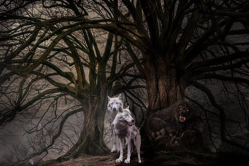 Wolves, Wolf, Fantasy, Photomontage, Mysterious