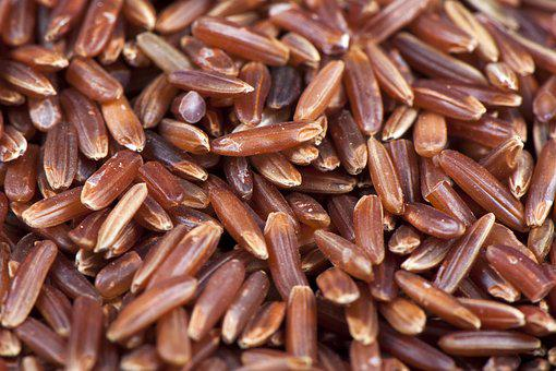 Rice, Red, Food, Healthy, Lunch, Fresh, Macro