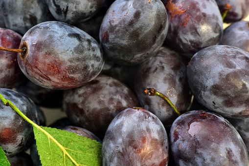 Plums, Background, Fruit, Stone Fruit, Ripe, Vitamins
