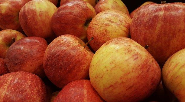 Apples, Gala Apples, Fruit, Eat, Healthy, Harvest