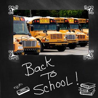 Back To School, School Bus, Bus, Education, Yellow