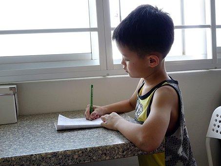 Writing, Boy, Child, Student, Kid, Homework, Pencil