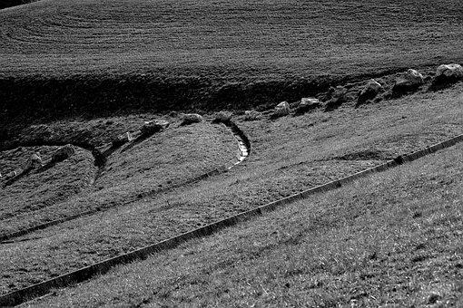 Meadow, Summer, Field, Patterns, Landscape