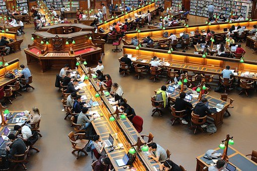 Library, La Trobe, Study, Students, Row, Studying