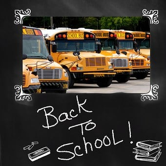 Back To School, School Bus, Bus, Education, Yellow
