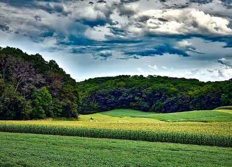 Wisconsin, Landscape, Sky, Clouds, Corn, Soybeans