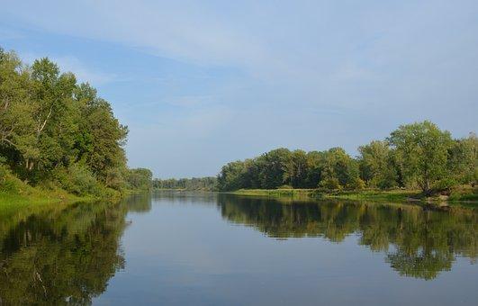 River, Forest, Nature, Samara, Summer
