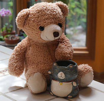 Old Teddy Bear With Mug, Teddy Bear, Toy