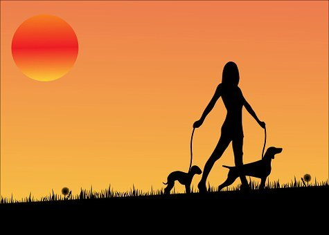 Sunset, Dog, Dogs, Walking, Woman, Lady, Girl