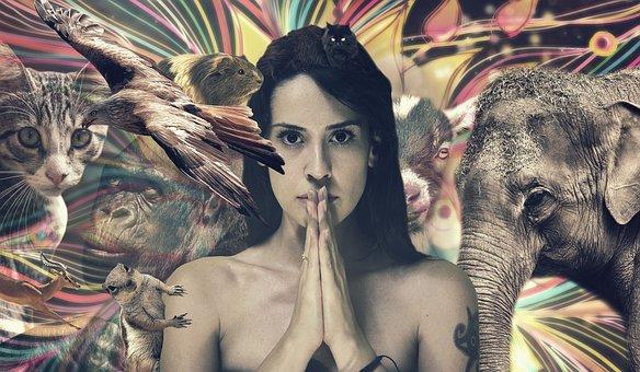 Girl, Nature, Animals, Happy, Cosmos, People, Elephant