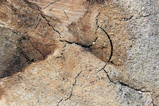 Background, Wood, Ring, Weathered, Cracked Wood