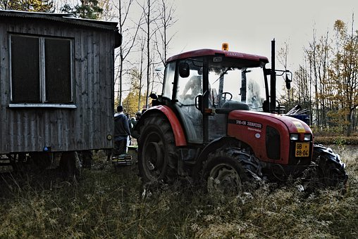 Harvesting, Tractor, Forest, Apiary, Window, Grass