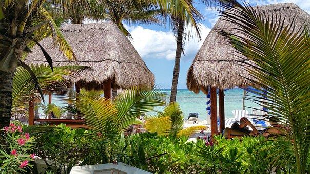Beach, Mexico, Hotel, Resort, Thatch, Hut, Palms
