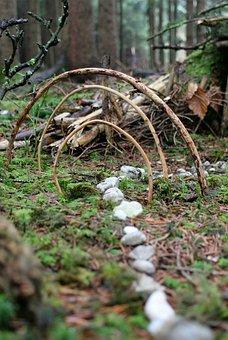 Nature, Ritual, Rituals, Indians, Shaman, Shamanism