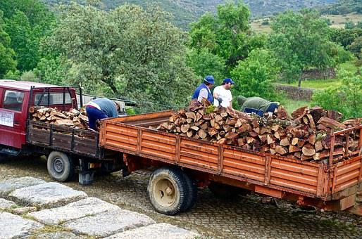 Wood, Trailer, Cartage, Timber, Pile, Truck, Firewood