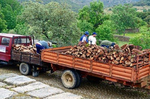 Wood, Trailer, Cartage, Timber, Pile, Truck, Firewood
