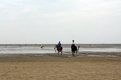 North Sea, Wadden Sea, Ride, Ebb, Cuxhaven