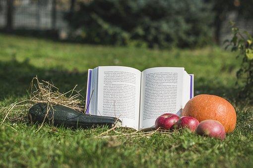 Book, Fruit, Vegetables, Pumpkin, Apples, Zucchini, Hay