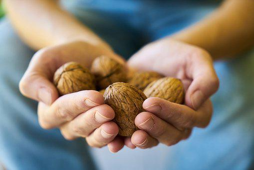 Walnut, Healthy, Health, El, Keep, Handful, Human