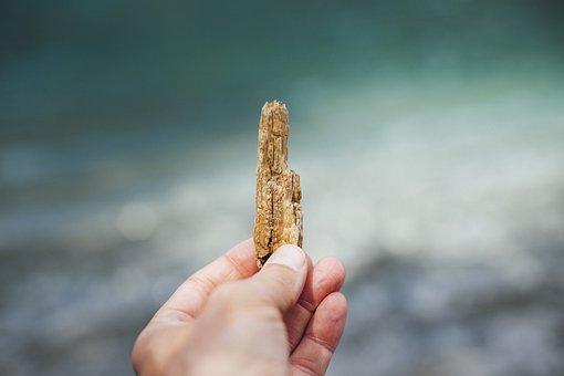 Drift Wood, Wood, Beach, Nature, Water, Sea, Sand