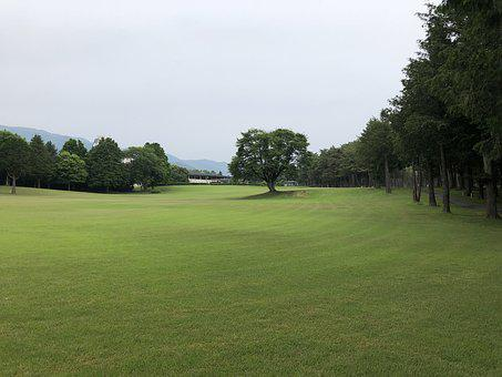 Golf, Natural, Landscape, Green, Fairway, Scenic
