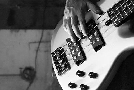 Bass, Electric Bass, Bass Guitar, Music, Instrument