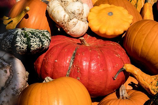 Pumpkin, Pumpkins, Vegetables, Autumn, Harvest, Box