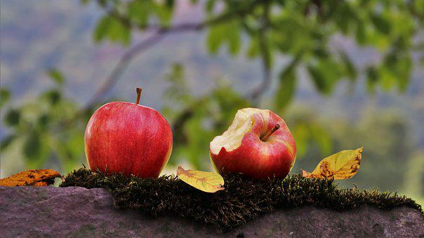 Apple, Two, Para, Red, Healthy, Delicious, Autumn