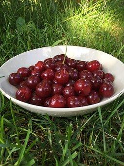 Cherry, Berry, Red, Vitamins, Harvest, Ripe, Juicy