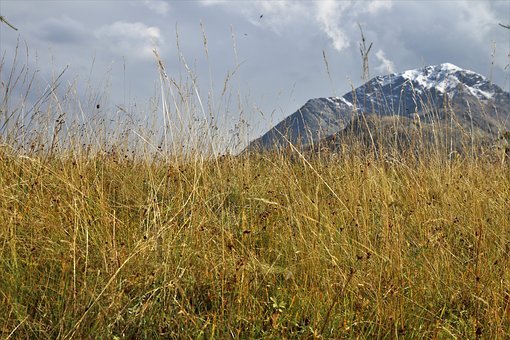 Dry Grass, The Idyll, Tops, Mountains, Landscape
