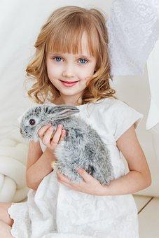Rabbit, Hare, Baby, Girl, Studio, Toy, Beautiful, Cute