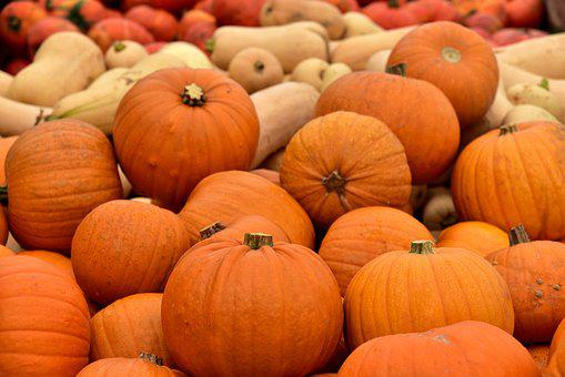 Pumpkin, Market Stall, Market, Halloween, Autumn, Sale