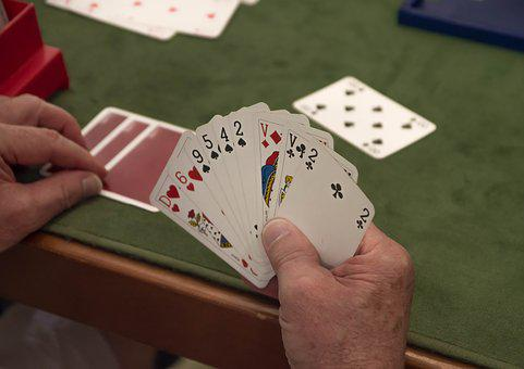 Cards, Game, Player, Bridge, Entertainment