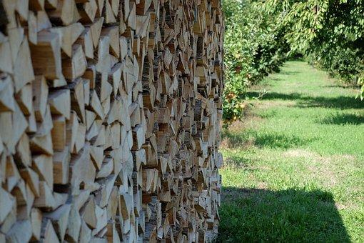 Holtz, Holtz Wall, Grass, Apple Tree, Tree