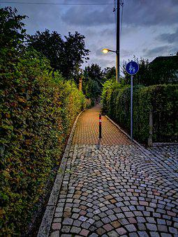 Night, Dusk Light, Sky, Blue, Green, Walk
